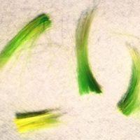 """El vocalista de """"30 Seconds to Mars"""" se despidió con esta fotografía en la que aparecen algunos mechones de su cabello verde. Foto:vía instagram.com/jaredleto"""