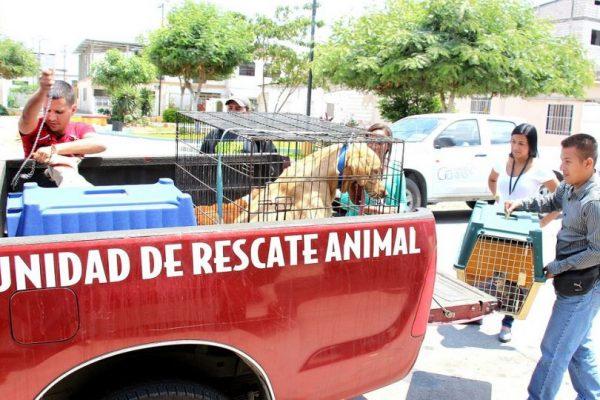 Guayas enviará técnicos de rescate animal a Loja