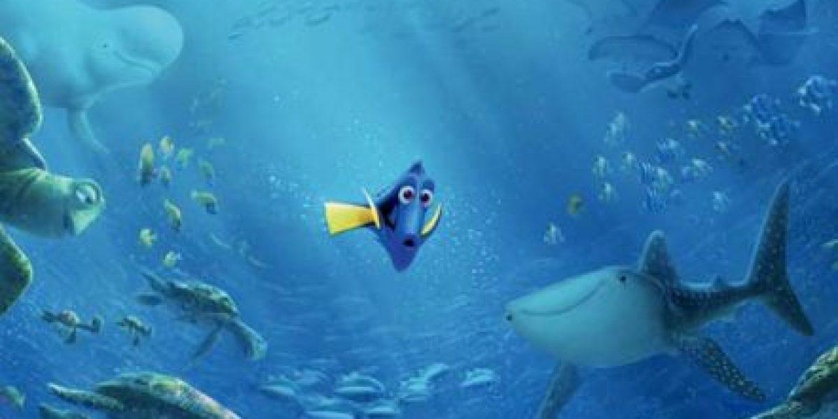 """La historia cruel detrás de los peces de """"Buscando a Dory"""""""