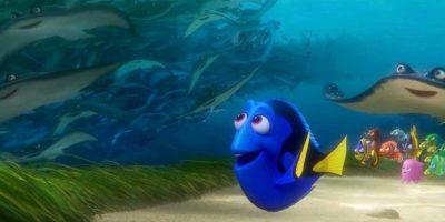 """""""Dory"""" vuelve a la pantalla grande este 2016 como protagonista de su propia película. Foto:Disney Pixar"""
