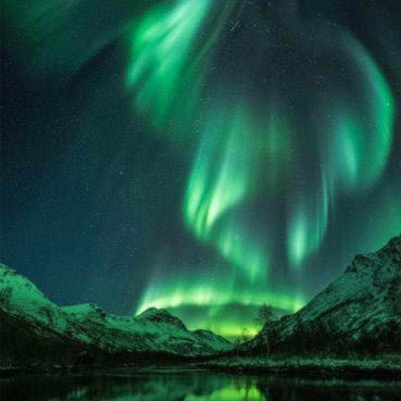 Aurora Bird Foto:Jan R Olsen – Insight Astronomy Photographer of the Year 2016