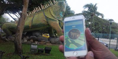 La iguana de Guayaquil es una Pokeparada Foto:J.DUARTE
