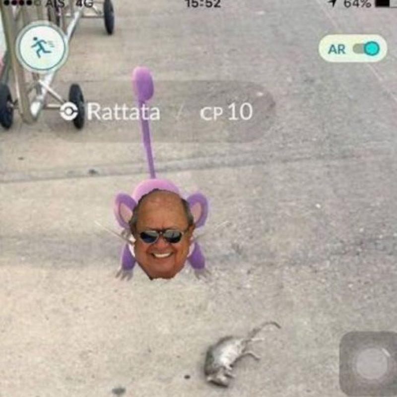 Rattatas por todos lados. Foto:vía Twitter