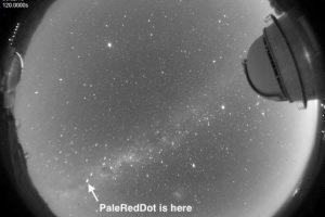 Así se ve la estrella Próxima Centauri desde nuestro planeta Foto:Facebook.com/palereddot