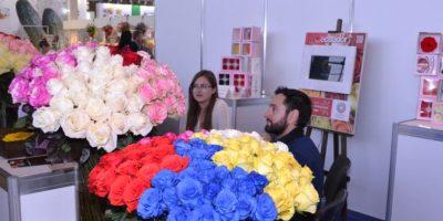 Además el gran distintivo de la rosa ecuatoriana es su prolongada vida en el florero después del corte. Foto:Cortesía