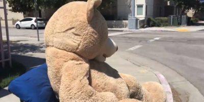 El oso de peluche en una captura del vídeo que grabó el padre Foto:El País