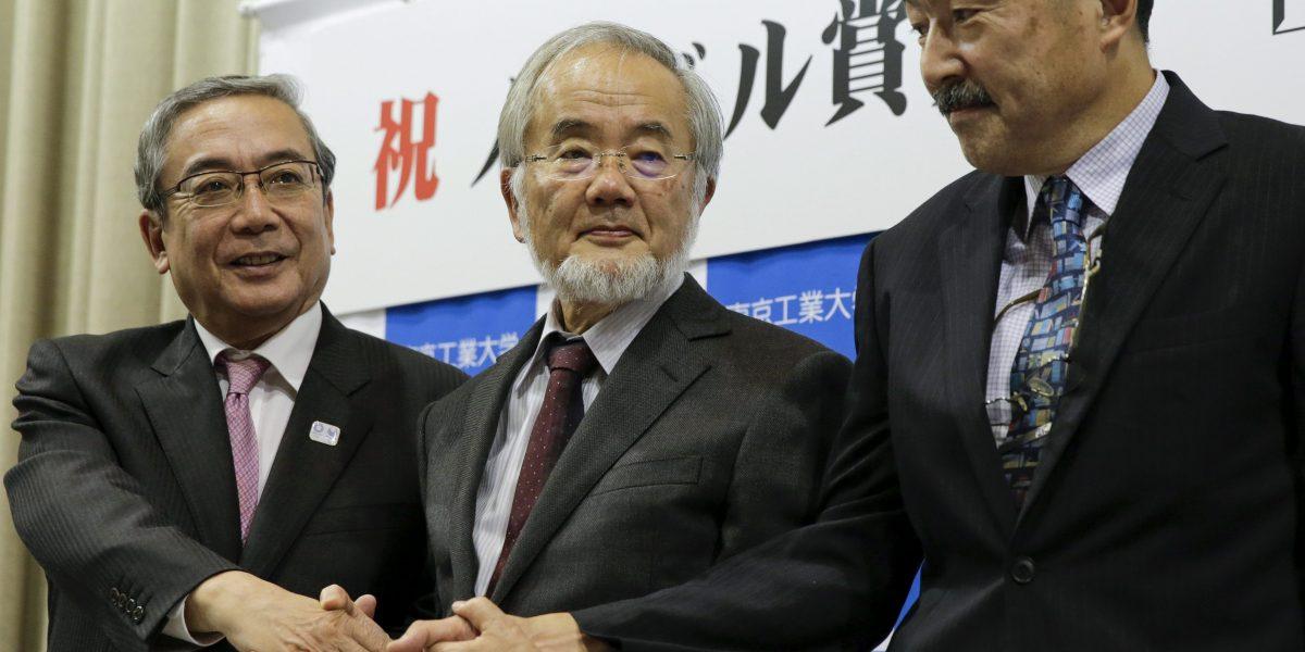 Yoshinori Ohsumi gana premio Nobel de Medicina por su teoría