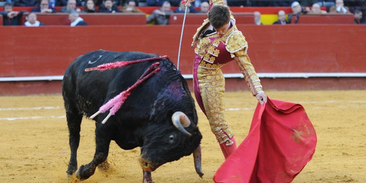 Justicia española anula prohibición de corridas de toros en Cataluña