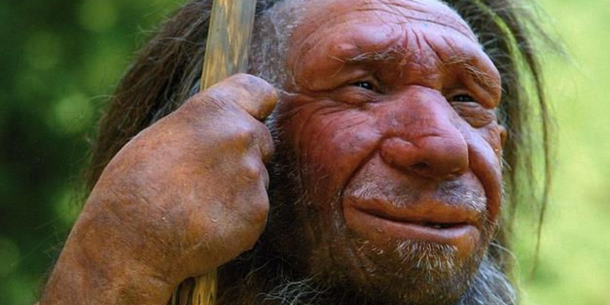 Neandertales se extinguieron por estrés a la llegada de Homo sapiens