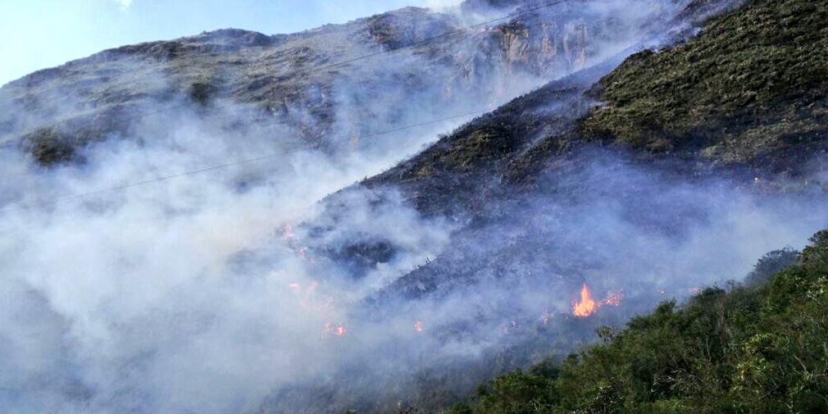 Continúan labores para combatir incendio forestal en Papallacta
