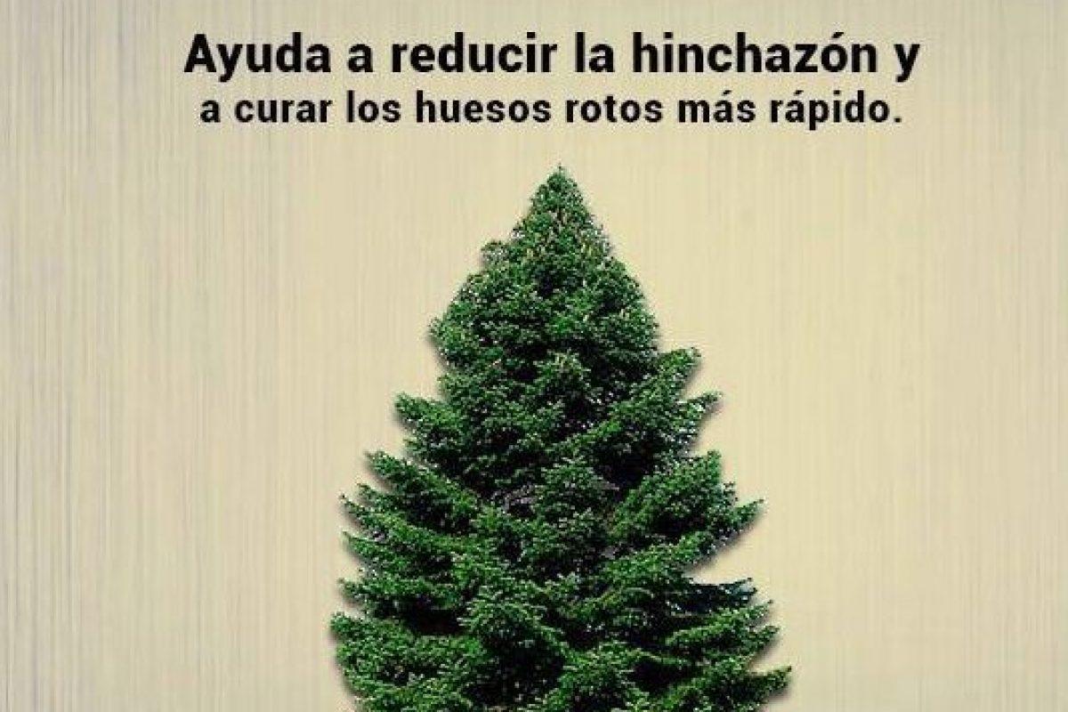 Facebook Salud Con Remedios. Imagen Por: Facebook Salud Con Remedios