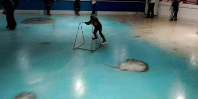 Pista de patinaje en Japón contenía 5 mil peces congelados