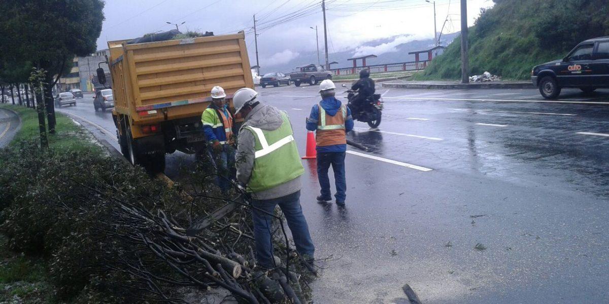 Lluvia en Quito: precipitaciones aumentaron en 220%