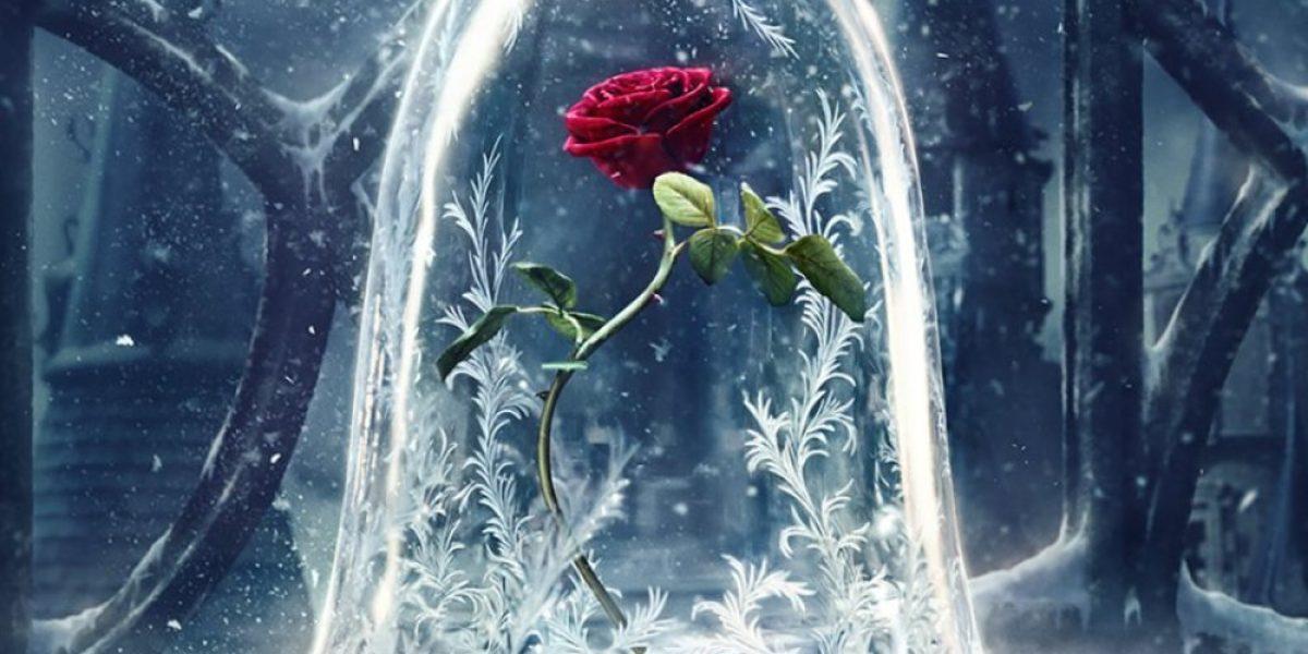 Réplicas de la rosa de la
