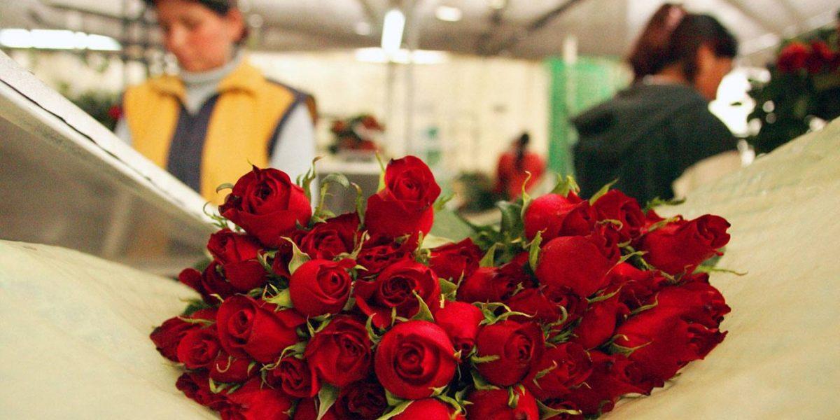 Ecuador promociona camarones y rosas en China