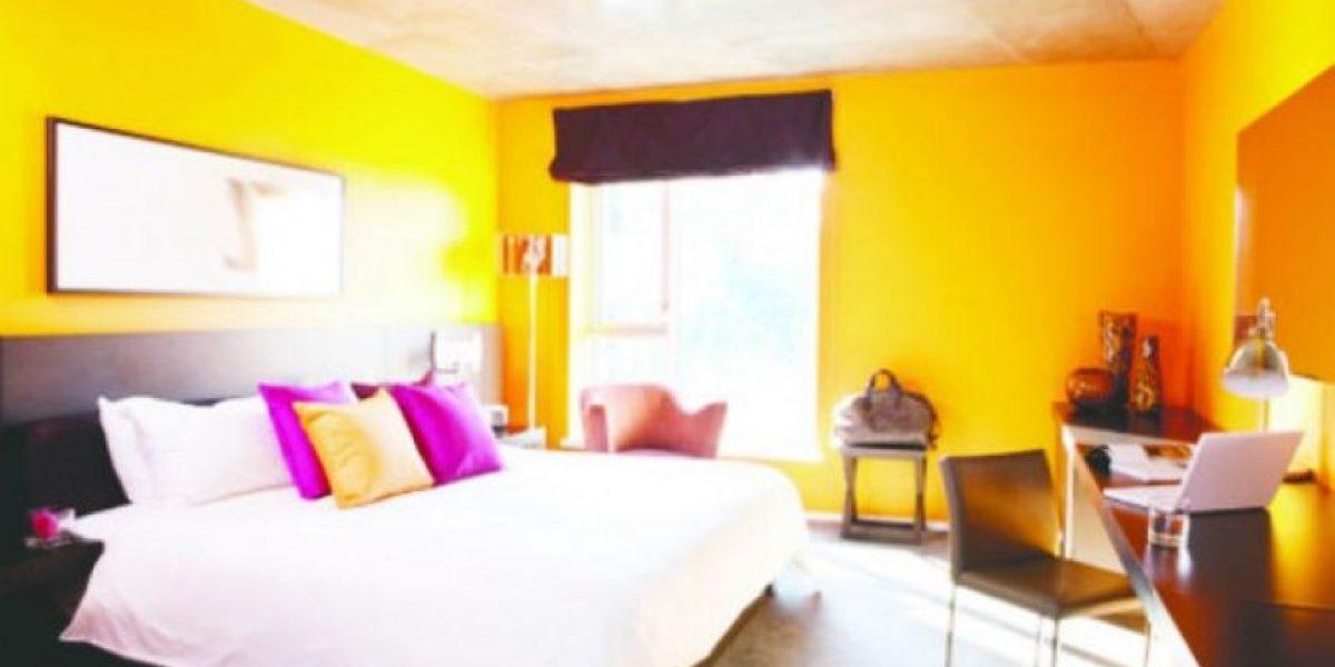 FOTOS. Explota el color en tu hogar
