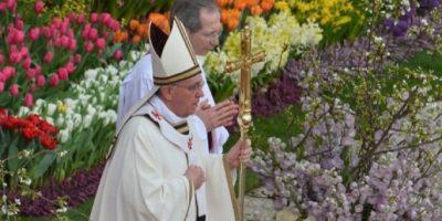 Más de 40 mil flores adornan el Vaticano