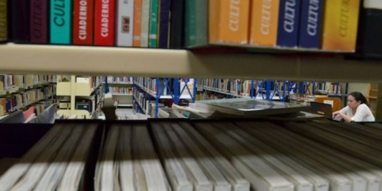 Biblioteca del campus central. Foto:Juan José López Torres