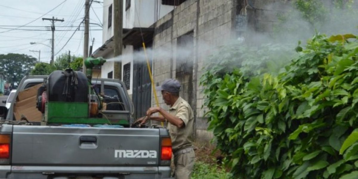 Salud confirma ocho casos de chikungunya en Guatemala