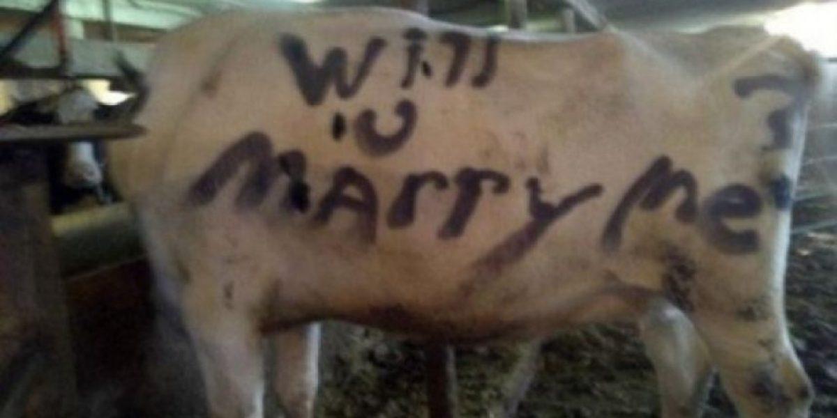 Estas podrían ser las peores propuestas de matrimonio
