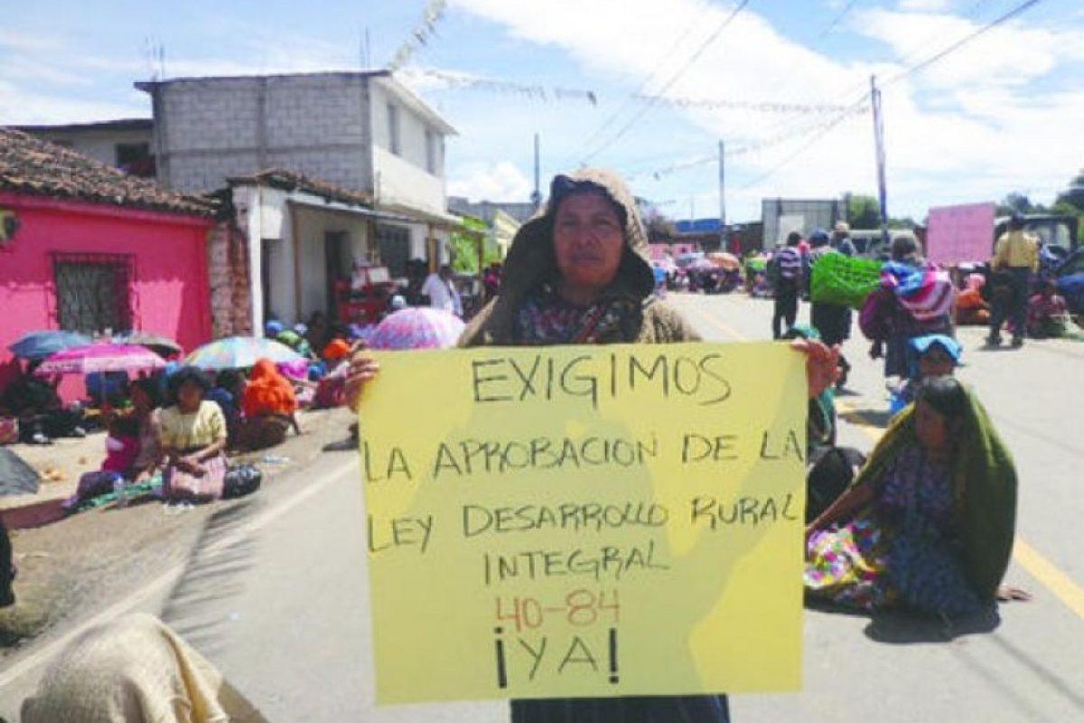 Fotos: Comité de Unidad Campesina