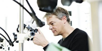 """Descubridores del """"GPS interno"""" del cerebro ganan Nobel de Medicina"""