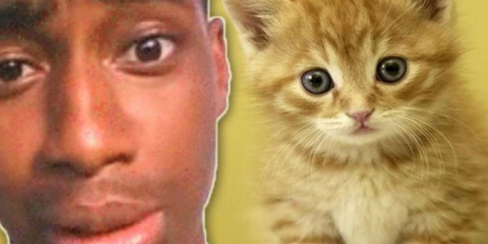 El adolescente que pateó a su gatito. Foto:Oddee