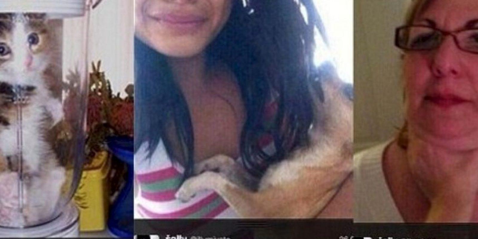La que amenazó con matar a su perro si One Direction no la seguía en Twitter Foto:Oddee