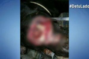 A los perros callejeros los están quemando con ácido Foto:Caracol Noticias
