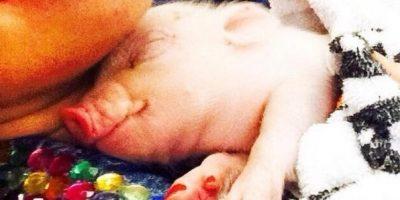 Estas fueron las imágenes que encendieron la furia de usuarios de redes sociales Foto:MileyCyrus vía Instagram