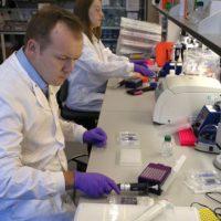 Los científicos demostraron que aquellas personas que tenían el virus, arrojaban los peores resultados en las pruebas para medir el procesamiento y la capacidad de la atención visual. Foto:Getty Images