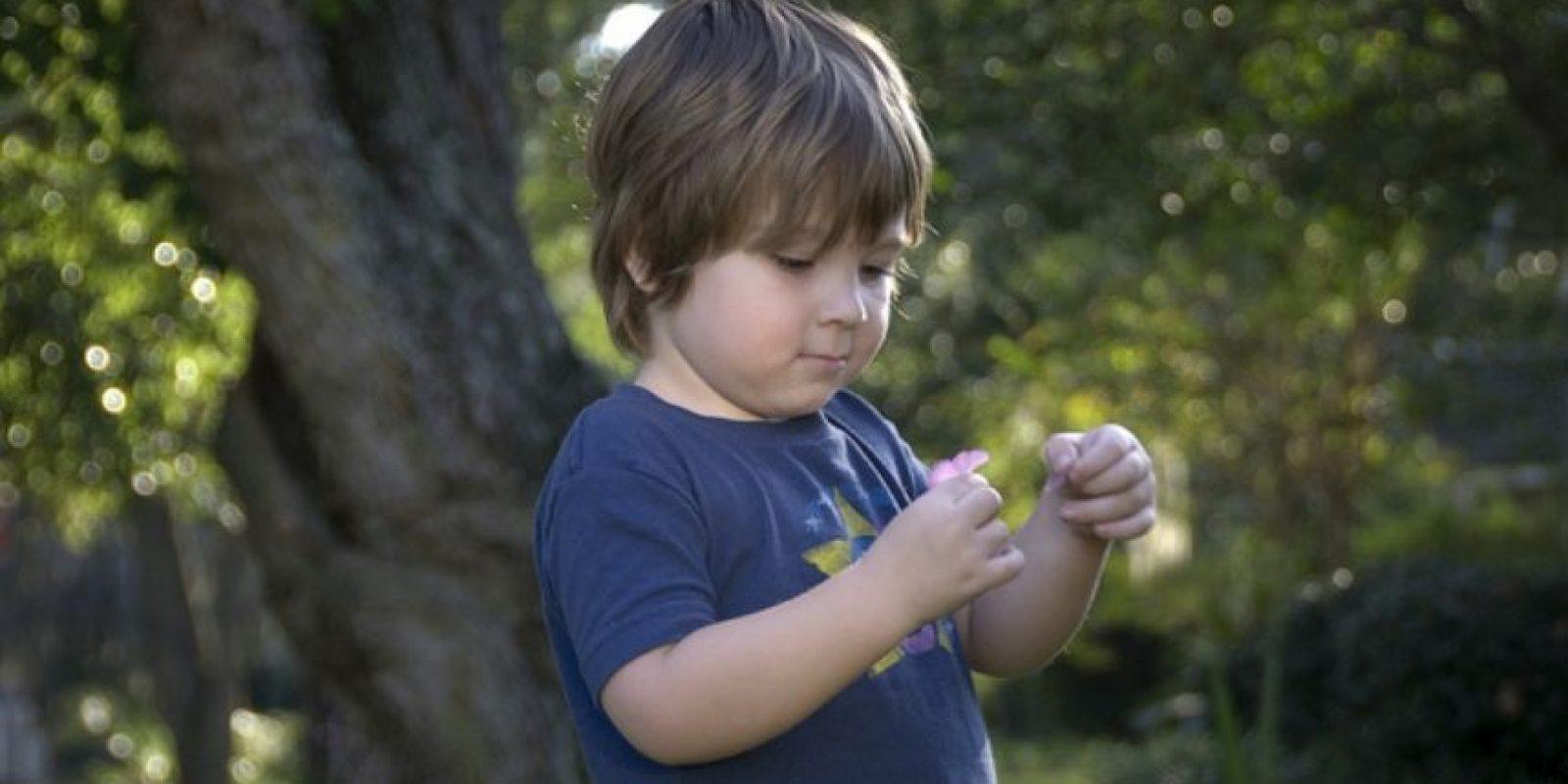Su foto ha sido utilizada para mil anuncios, pero su fama no ha interrumpido su crecimiento y desarrollo infantil Foto:Vía KnowYourMeme.com