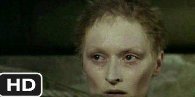 """El primero es por """"La Decisión de Sophie"""", de 1983, donde interpretó a una sobreviviente de un campo de concentración. Foto:ITC Entertanment"""