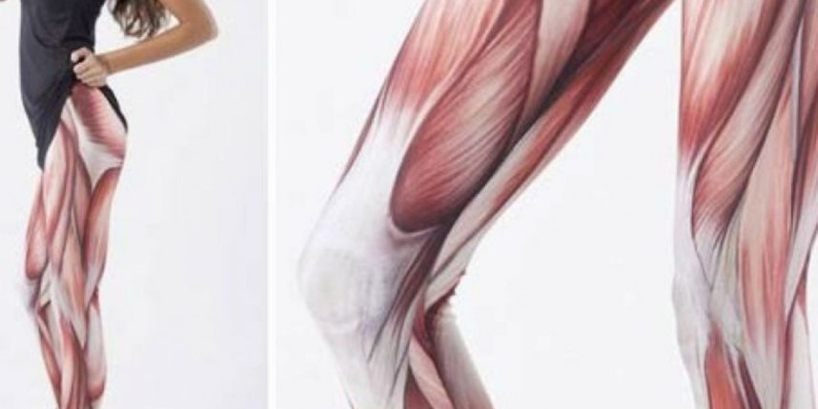 De músculos. Foto:Poorly Dressed/CheezBurguer