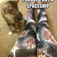 Leggings de gatos Foto:Poorly Dressed/CheezBurguer