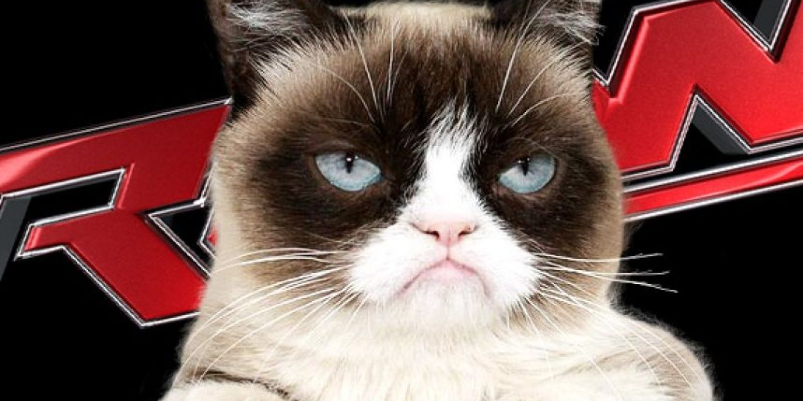"""Grumpy Cat llegará al evento """"Monday Night Raw"""" para promocionar su nueva película Foto:WWE"""