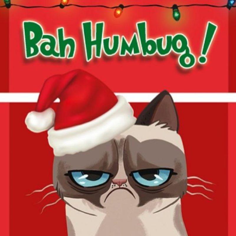 Foto:Instagram/Grumpy Cat