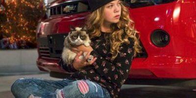 Todo cambia, cuando una niña descubre que puede hablar con Grumpy Foto:Instagram/Grumpy Cat