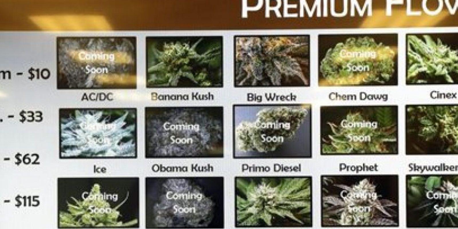 La mayor parte de Estados Unidos apoya la legalización. Información: Mic.com Foto:AP