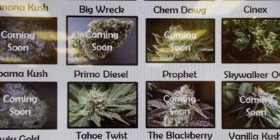 Los estados donde se ha legalizado no han enfrentado grandes cambios. Información: Mic.com Foto:AP