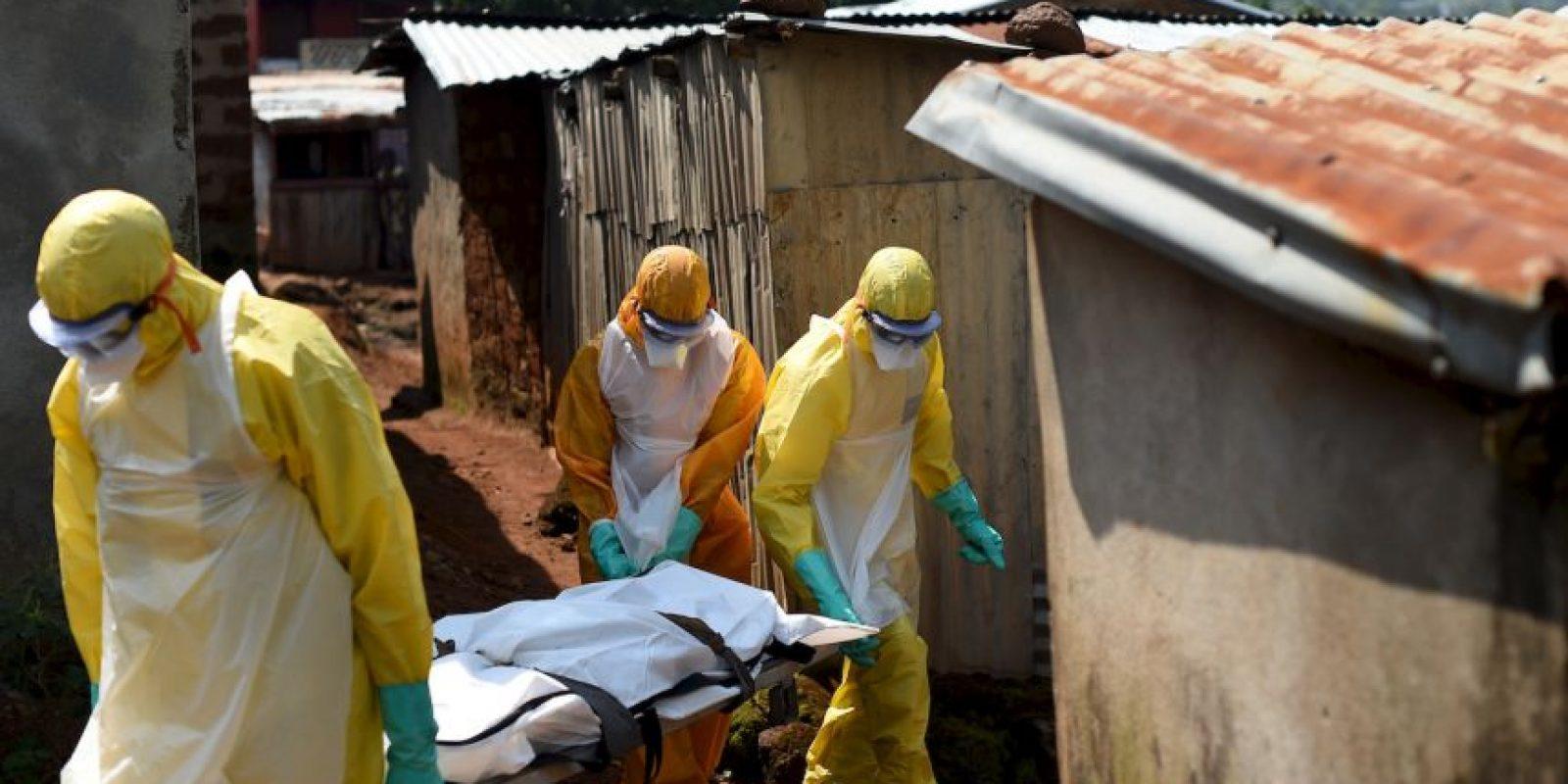 1. Según la OMS, se considera que los huéspedes naturales del virus son los murciélagos frugívoros de la familia Pteropodidae. Foto:AFP