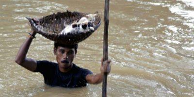 Este hombre indio rescata a unos gatitos de una inundación Foto:AP