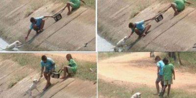 Así rescataron dos niños a un perrito de morir ahogado Foto:Tumblr