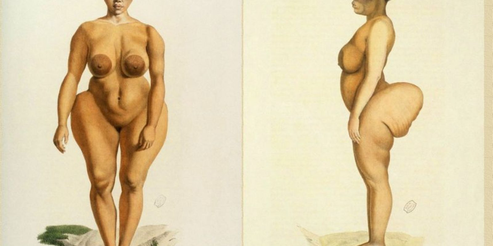 """Se llamaba Sara Baartman, fue esclava, abusada y exhibida en un show de """"freaks"""" en Europa Foto:Wikipedia"""