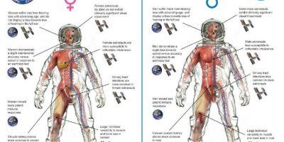 Las 5 diferencias entre astronautas hombres y mujeres, según NASA