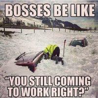 """""""Los jefes dirán: '¿Pero vendrás a trabajar?"""