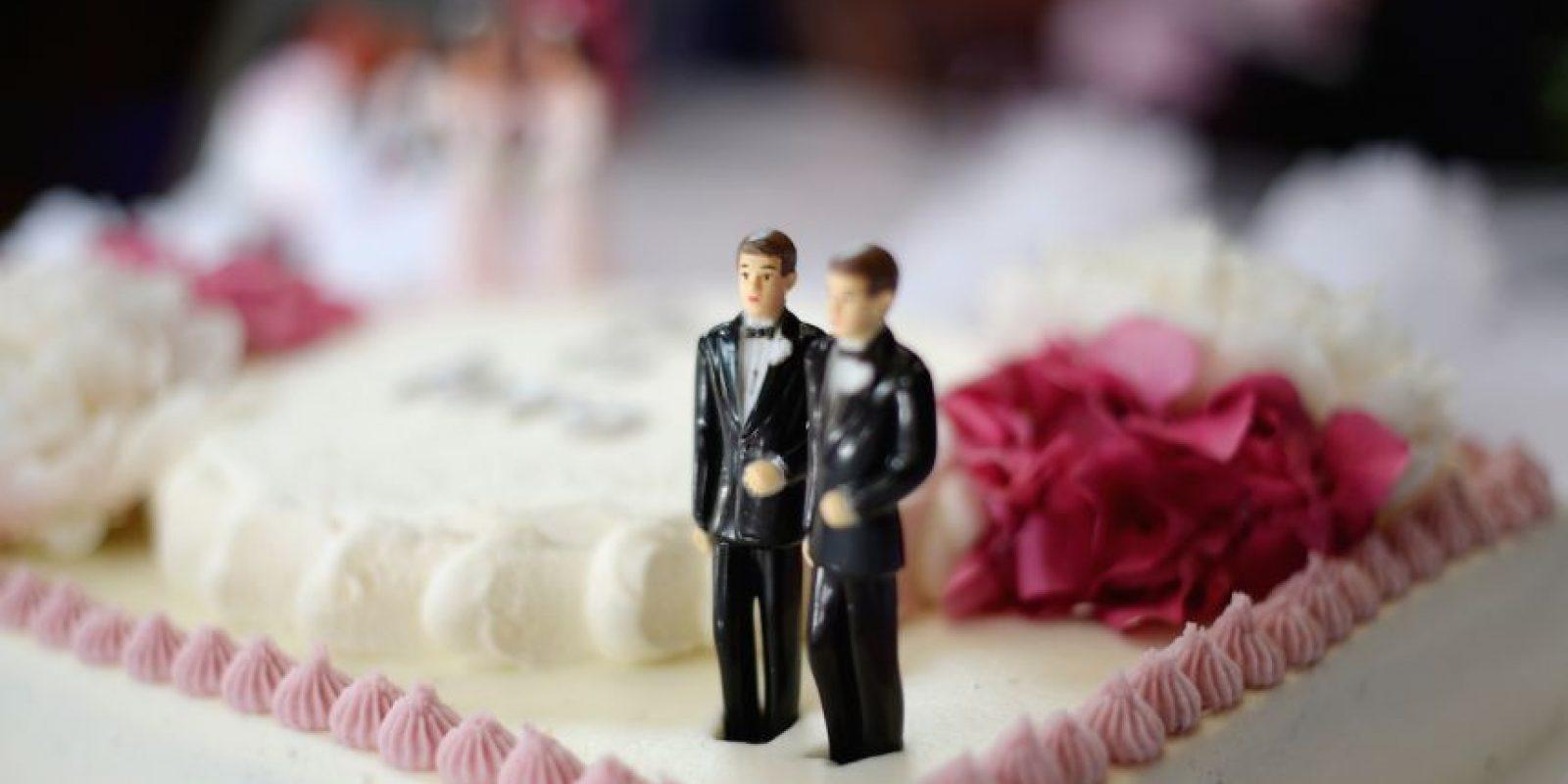 Algunos investigadores consideran que estudios sobre la homosexualidad no son importantes para la ciencia. Foto:Getty Images