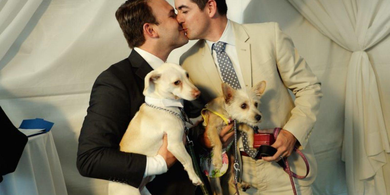 Este estudio no pretende crear un tratamiento genético que evite la homosexualidad. Foto:Getty Images