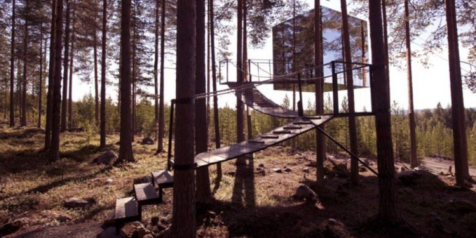Treehotel, en Suecia. Dormirán en el bosque, con paredes transparentes que, por fuera son espejos que camuflajean la construcción. Foto:Flavorwire