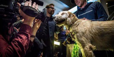 Arthur se encontró con sus nuevos dueños cuando compartieron comida con él Foto:Team Peak Performance/Facebook